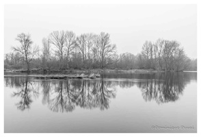 Bords de Loire (42)